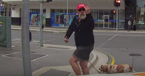 Angry Pedestrian Tries To Bully A Driver.. Seconds Later? He Gets A Satisfying Dose Of Karma!