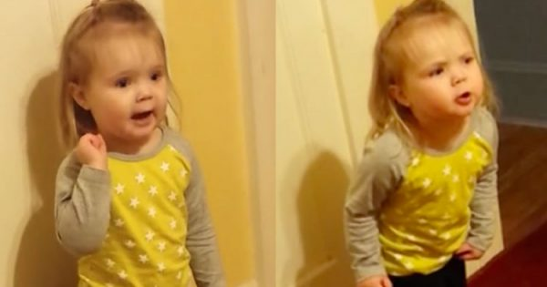 "Toddler hears grandma unintentionally say ""bad word,"" completely goes off on her"