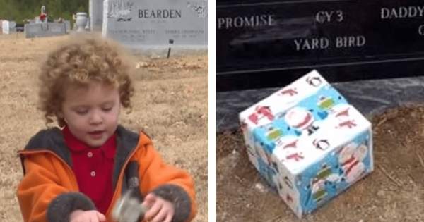 2-Yr-Old Boy's Father Dies in Tragic Car Crash, But 8 Months Later He Finds Mysterious Box On His Grave