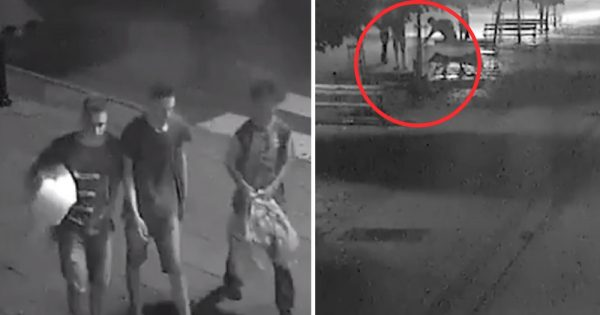 3 Teens See Homeless Man on Bench in Middle of Night – What They Do Next Leaves Guard in Awe