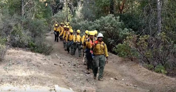 Firefighters March Down The Mountains, Sing Chilling Hymn With Words That Are Going Viral