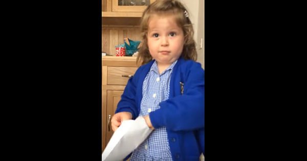 Toddler Opens Letter to Find Out New Sibling's Gender, But Her Reaction Doesn't Go as Mom Expected