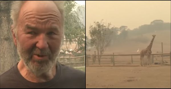 Deadly Flames Spread Across Wildlife Site But One Man Stays Behind to Save Animals in Danger