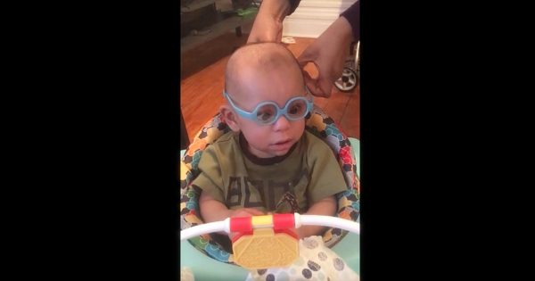 Adorable Toddler Gets His First Pair of Glasses, Has a Reaction That Leaves Even Mom and Dad in Awe