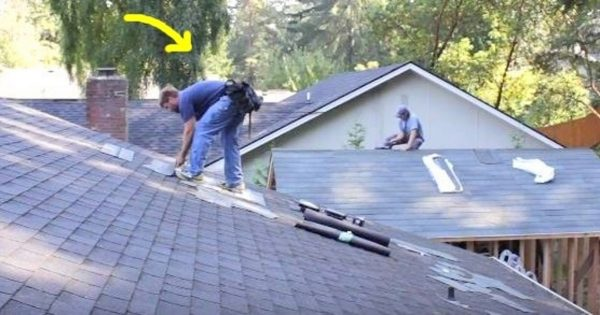 Roofers Can't Keep Still When Music Plays On – Man in Blue Has People Everywhere Laughing Out Loud