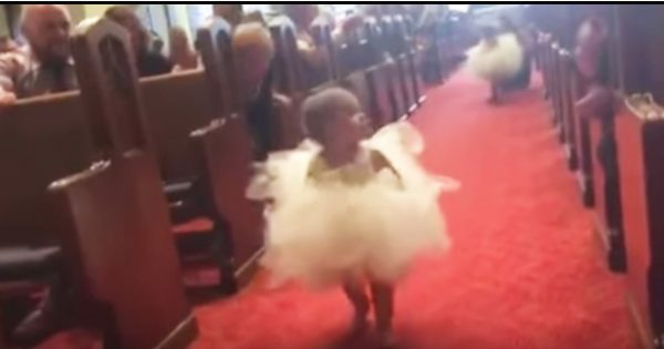 Flower Girl's Confused When She Walks Down The Aisle – Steals The Spotlight When She Sees a Familiar Face