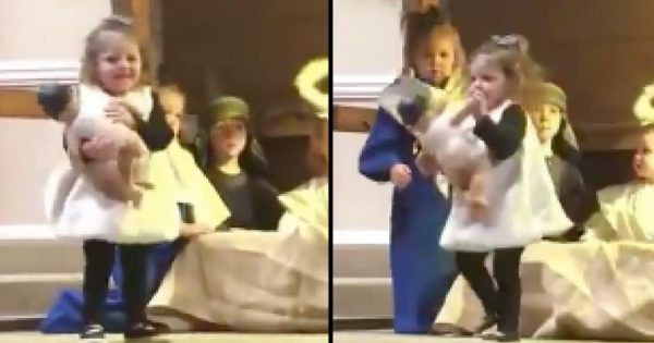 Sheep Runs Off With Baby Jesus During Nativity – But Mother Mary Isn't About To Let Her Get Away