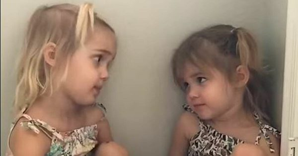 Twin tells sister she wants to be a teacher, 2-year-old's response has whole internet dying of laughter