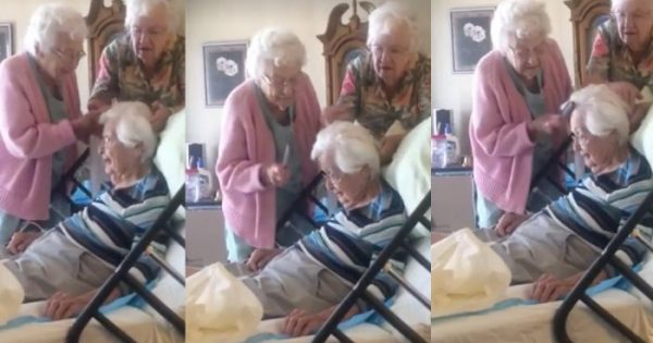 Elderly Sisters Visit 97-Yr-Old Sister In Hospital Bed. Their Next Move Is Melting Hearts Everywhere