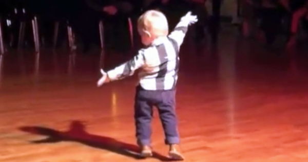 Toddler hears favorite song plays on, begins to dance the jive, but his last move cracks whole crowd