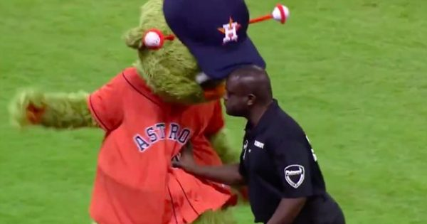 Baseball mascot keeps taunting a security guard – Moments later, he ends up getting completely served