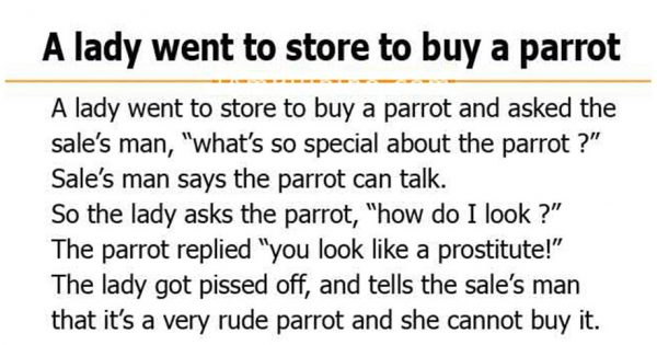 A Lady Went To Store To Buy A Parrot