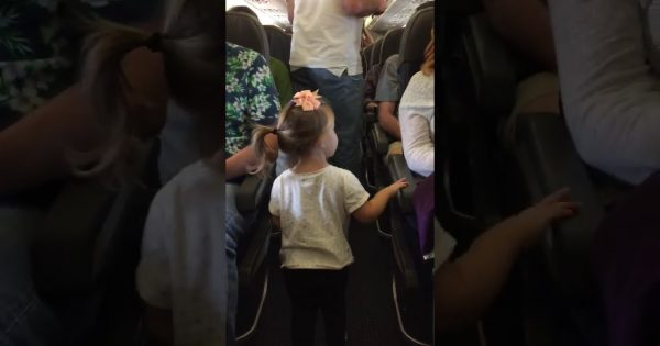 Passengers roll eyes when little girl walks onto plane – but what she does next leaves them smile from ear to ear