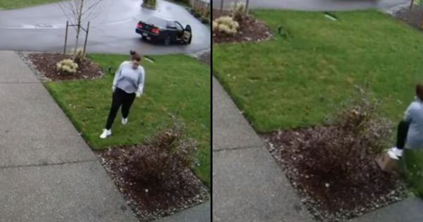 Package thief attempts to steal from front porch, karma immediately strikes back with full force