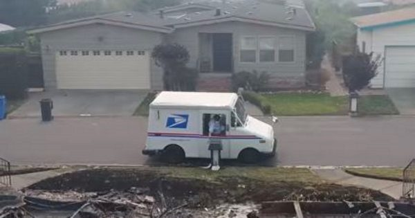 Man secretly follows and films mail carrier – but when he takes a closer look, he realizes true intentions