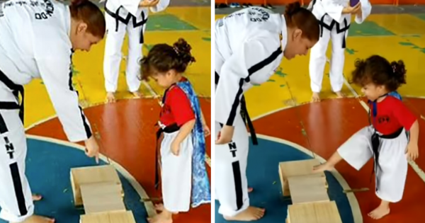 Taekwondo little girl gets ready to break a plank, has everyone in hysterics with her hilarious technique