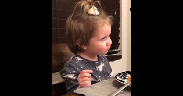 Little girl tells dad she has a boyfriend during dinner but dad's comeback makes everyone laugh