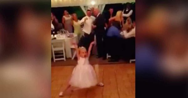 Flower girl's wedding dance leaves guests laughing — Now wait til you see when the song changes