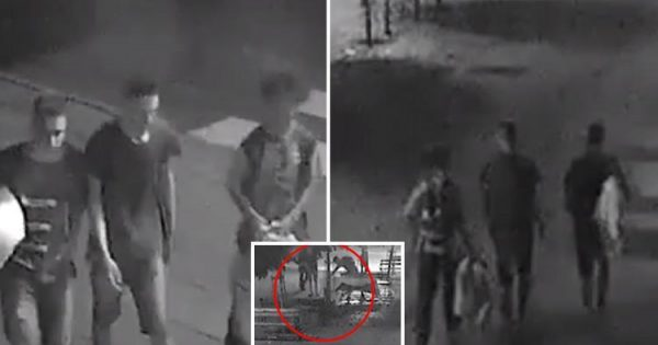 Teens approach homeless man sleeping on bench. What they do next leaves guard in awe