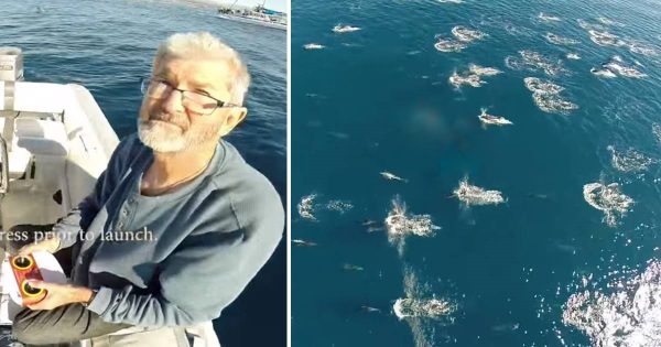 Man flies drone over ocean and captures incredibly rare phenomenon on camera