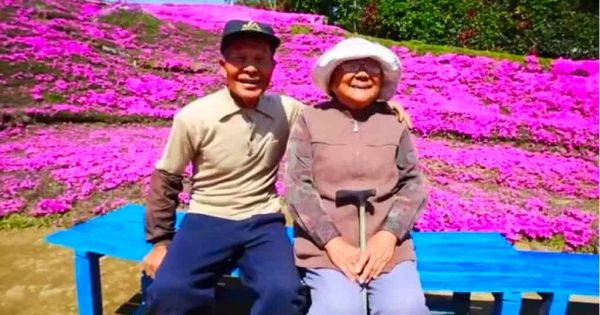 Husband Spends Years Planting Thousands Of Flowers For His Blind Wife
