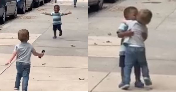 Toddler best friends see each other after 2 days – hug like they've been apart for years in sweet viral video