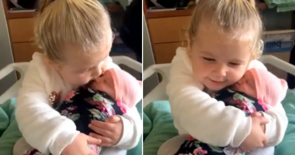 3-year-old girl meets her newborn sister for 1st time – immediately falls in love with her