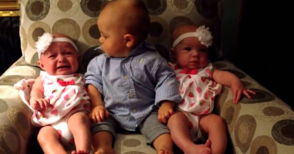 Seeing double! adorable reaction of boy meeting his twin sisters for the first time
