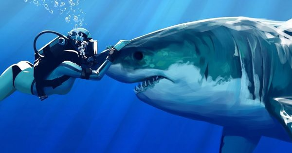 Guy And Wild Shark Have Been Best Friends For Decades